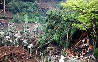 小雨が降る中、土砂崩れがあった「ログ山荘火の鳥」で行方不明者を捜索する自衛隊員ら=18日午前8時31分、熊本県南阿蘇村長野、長島一浩撮影