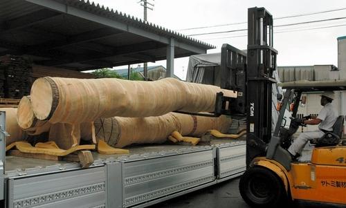 写真:製材工場に搬入された「奇跡の一本松」の幹=15日午前6時14分、愛知県弥富市、鈴木祥孝撮影
