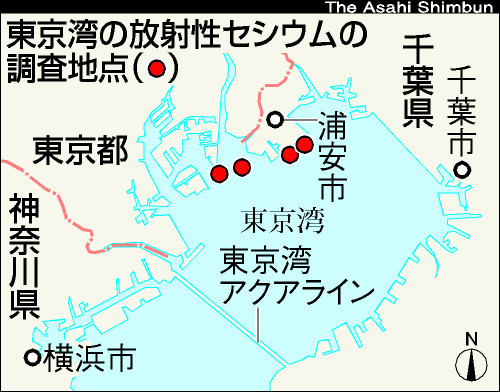 図:東京湾の放射性セシウムの調査地点