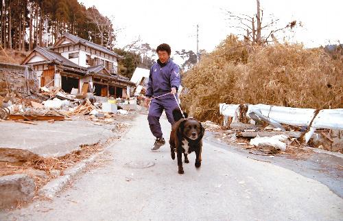 写真:ペットと暮らすため、半壊した自宅(奥)にいた男性=3月下旬、宮城県石巻市、藤添尚子さん撮影