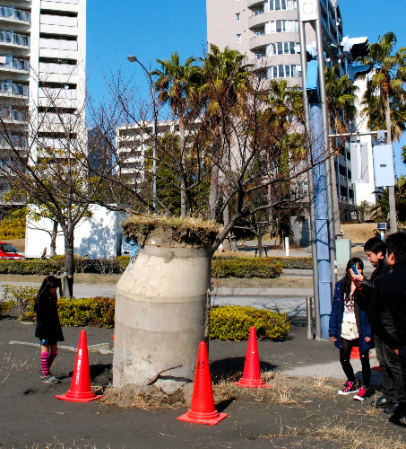 写真:地中から大人の身長ほどに飛び出したコンクリート管=千葉県浦安市、吉井亨撮影