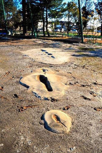 写真:地中から噴き出した泥が固まった校庭=茨城県潮来市日の出3丁目の日の出中学校、池田敏行