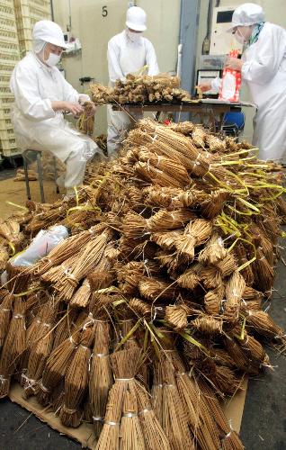 写真:操業を再開した工場では、わらにくるまれた納豆に包装紙をかける作業が始まった=25日午前9時11分、水戸市、水野義則撮影