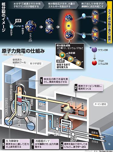 図:原子力発電の仕組み(沸騰水型軽水炉の場合)