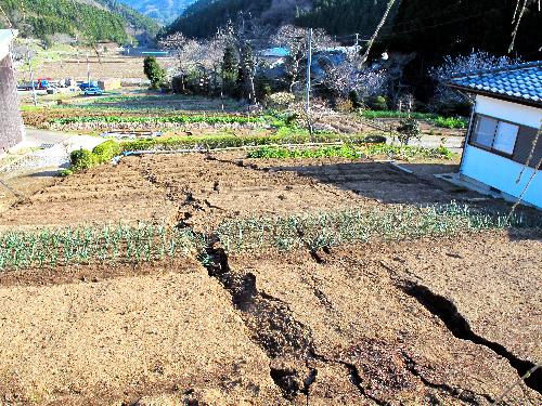 写真:福島県いわき市内の畑に現れた断層=八木浩司山形大教授提供