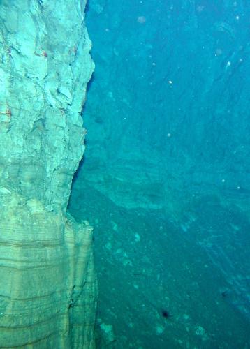 写真:しんかい6500がとらえた海底の断層の崖=海洋研究開発機構提供