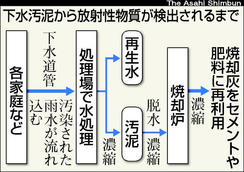 図:下水汚泥から放射性物質が検出されるまで