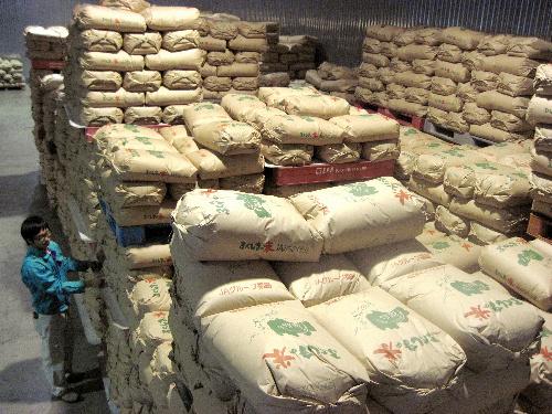 写真:JAみちのく安達の低温倉庫には出荷を待つ新米の袋が高く積み上げられている=12日、福島県二本松市向原、宮嶋加菜子撮影