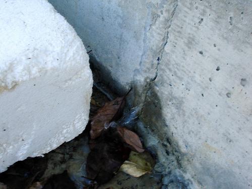 写真:装置の入っている建屋の床から外に漏れ出す処理水=東京電力提供