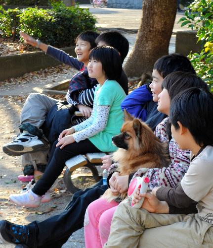 写真:公園で、この日の予定について話し合う「フリースクール多摩川」の子どもたち=府中市