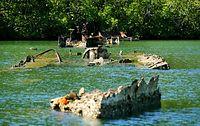 干潮時、水面に姿を見せる駆逐艦「菊月」=9月4日、ソロモン諸島・フロリダ島、橋本弦撮影