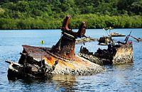 船体にはマングローブの若木が生えていた=ソロモン諸島・フロリダ島、橋本弦撮影