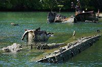 「菊月」に装備されていた単装砲の砲身とみられるものもあった=9月4日、ソロモン諸島・フロリダ島、橋本弦撮影