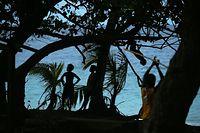 夕暮れ時、海岸近くの木陰で遊ぶ子どもたち=9月8日、ソロモン諸島・ガダルカナル島、橋本弦撮影