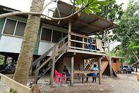 島の住宅。高床式になっている家をよく見かけた=9月8日、ソロモン諸島・ガダルカナル島、橋本弦撮影