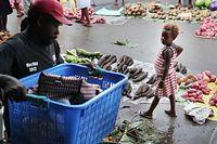 市場で働く人を見つめる女の子=9月7日、ソロモン諸島・ガダルカナル島、橋本弦撮影