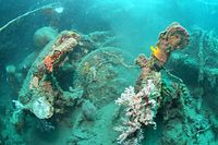 軍用車の一部だろうか、タイヤらしき物も沈んでいた=9月5日、ソロモン諸島・ガダルカナル島、橋本弦撮影