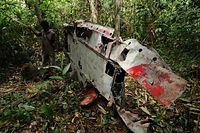 密林の奥に残された零戦。主翼にあしらわれた日の丸の赤い塗料がいまだ鮮やかさを保っていた=9月8日、ソロモン諸島・ガダルカナル島、橋本弦撮影