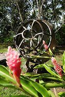 旧日本軍一式陸攻の機首にある風防部分=9月3日、ソロモン諸島・ガダルカナル島、橋本弦撮影