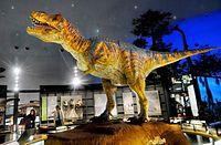 宝くじのお金でつくられたティラノサウルスのロボット。にらまれて泣き出す子もいるという=2015年11月18日、福井県勝山市の県立恐竜博物館、中井征勝氏撮影