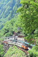 新緑に囲まれた欅平駅にトロッコ電車が乗り入れた=2015年5月28日、富山県黒部市宇奈月町黒部、高津守撮影
