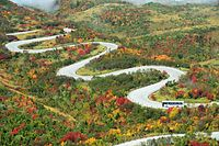 紅葉が見頃を迎えた立山黒部アルペンルートを走るバス=2015年10月5日、富山県立山町、朝日新聞社ヘリから、筋野健太撮影
