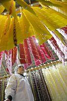 クチナシや赤カブを練り込んだ色鮮やかな寒もち=2015年1月21日、富山県立山町、寺脇毅撮影