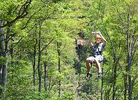 木々の間をさっそうと通り抜けるジップライン・アドベンチャー立山=2015年5月17日、富山市本宮の立山山麓スキー場、竹田和博撮影
