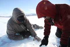 隕石探査初日、氷原に小さな黒い石が転がっている