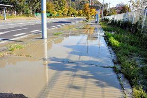 写真:長さ約30メートルにわたり歩道に水たまりができている。路面にひびが入っている場所もある。淡路市は液状化現象かどうかを調査している=13日午前7時48分、淡路市志筑新島、滝沢卓撮影