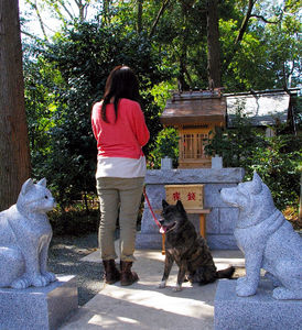 写真:ペットと一緒に参拝できる「伊奴寝子神社」=神奈川県座間市