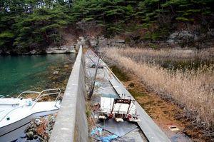 写真:修復計画がある鷺島(さぎじま)の防潮堤。堤の陸側(右)は耕作放棄地で、海水の水たまりができ、古い農機具が放置されていた=18日午後2時50分、宮城県塩釜市