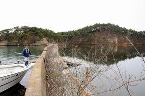 写真:漆島の防潮堤の内側(右側)は農地だったが、いまは水没している。釣り船が近づくと、サギが驚いたように飛び去った。宮城県はこの防潮堤も再建する計画だ=宮城県塩釜市、青木美希撮影