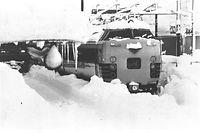 師走の大雪で北陸線福井駅に立ち往生する特急「白鳥」=1980年12月29日