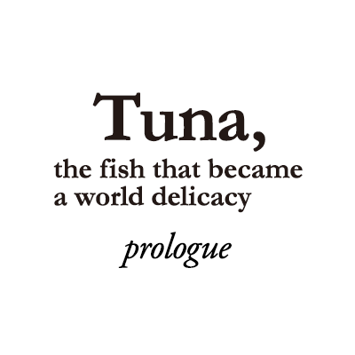 Tuna, the fish that became a world delicacy - Prologue