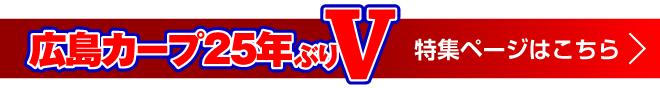 広島カープ 25年ぶりVへ