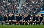 試合前、ハカを披露するニュージーランドの選手たち=AP