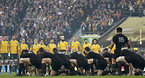 試合前、ニュージーランドのハカを見守るオーストラリアの選手たち=ロイター