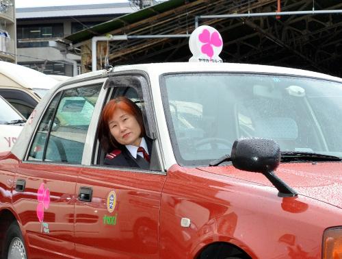 写真:ピンクの天井灯に衣替えしたタクシー=下京区