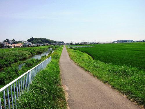 写真:鈴川沿いはほとんど農道の雰囲気。