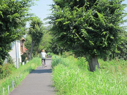 写真:散歩の人が多く自転車はほとんど通らない。