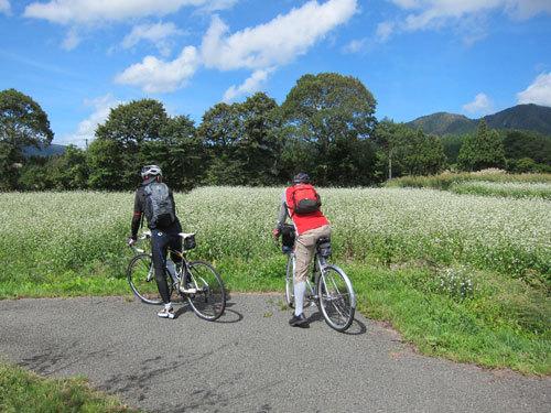 写真:蕎麦畑に見とれる2人。ジャージー姿が板についてきたMさん(左)とクラシックないでたちで決めてきたS先輩(右)