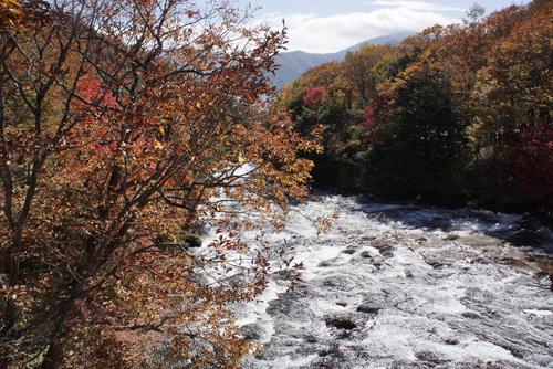 写真:上流から眺める風景も美しい竜頭の滝