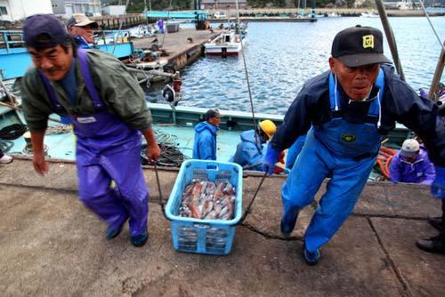 写真:早朝、中通島の有川町漁協・魚市場で水揚げを見学後、私たちは隣接する「海創館」で漁師料理に舌鼓を打った