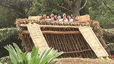 鹿児島)豊作祈る「アラセツ行事」 奄美の伝統神事