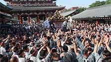 力強い「エイサ」、東京に初夏 浅草・三社祭「宮出し」