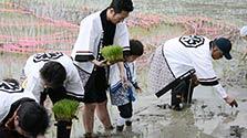勘九郎さん、息子2人と田植え 「心が震えるほど感動」