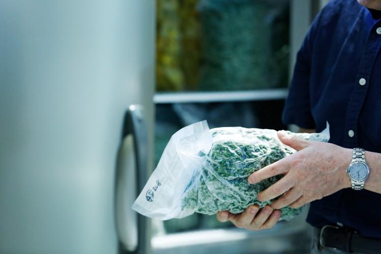 山椒も京都産。フレッシュなものを冷凍することで豊かな香りが保たれる