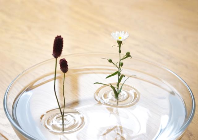 水面に立つ一輪の花 どんな器も花器に変える「Floating Vase / RIPPLE」