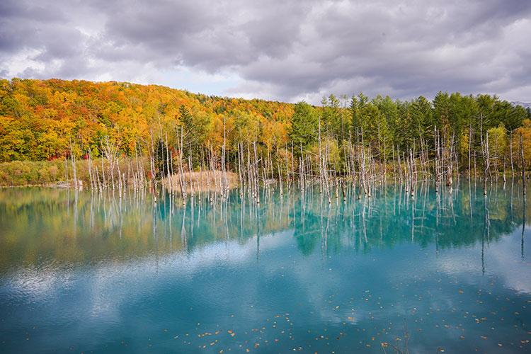 白銀の世界に流れる幻想的な青い川 北海道の冬景色を撮る